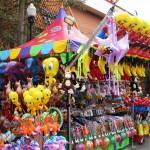 FL State Fair 012