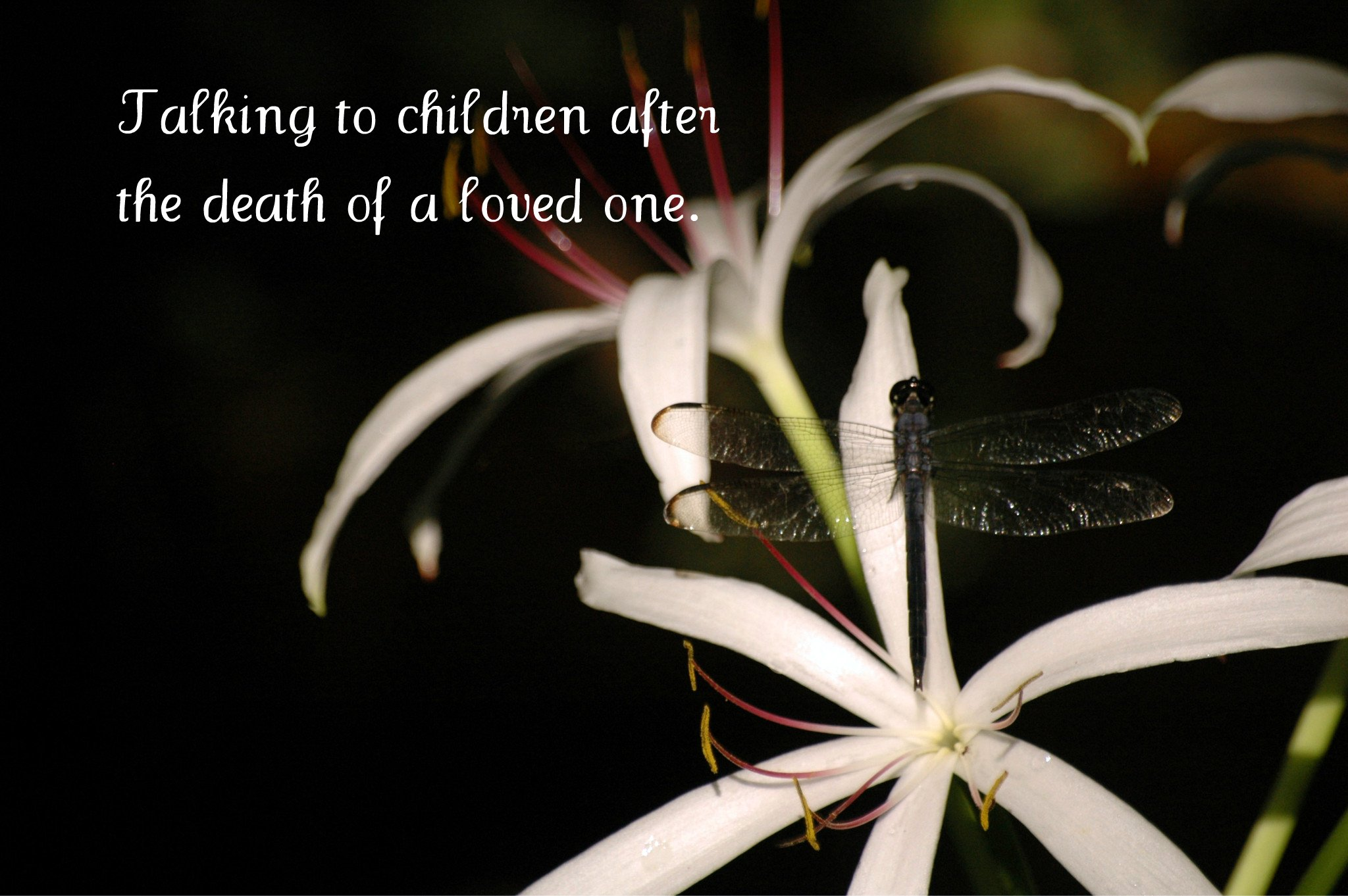 talking to children after the death of a loved one