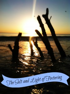 Salt and Light of Fostering